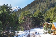 Wooden alpine chalet, snow, green pine trees, tourists Stock Photos