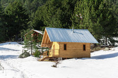 Wooden alpine chalet, snow, green pine trees Stock Images
