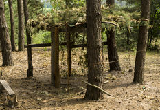 Wooden arbor with camouflage. In the pine forest Stock Photos