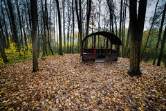 Wooden arbor in the forest. Park in an fall season Stock Photos