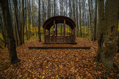 Wooden arbor in the forest. Park in an fall season Royalty Free Stock Image
