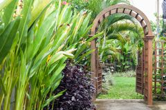 Wooden arbor with gate in garden. Wooden arched entrance to the backyard. Wooden arbor with gate in garden. Wooden arched entrance to the backyard Stock Photo