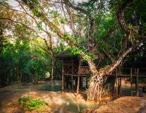 Wooden arbour at tropical rain forest at outdoors park. Laos Royalty Free Stock Photos