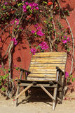 Wooden armchair under a bougainvillea tree. Wooden armchair under a colorful bougainvillea tree. Photo taken in west Africa Stock Photos