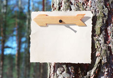 Wooden arrows sign and note paper on a tree Royalty Free Stock Image