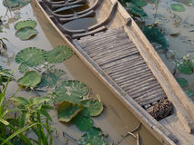 Wooden Asian Canoe Boat in Lily Pond. A small handmade canoe sized wooden canoe style boat next to lily pads in a small pond in Southeast Asia.  Boats are used Stock Photos