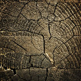 Wooden background. Textured old wooden grunge wooden background Royalty Free Stock Image