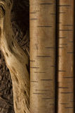 Wooden background. In a brown colors Royalty Free Stock Photography