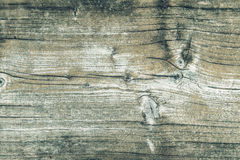 Wooden background. Abstract rustic wood texture Stock Photos