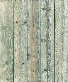 Wooden background. Abstract rustic wood texture. Vintage style Royalty Free Stock Images