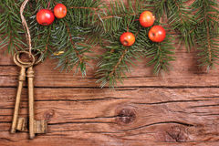 Wooden background with apples and fir green Stock Image