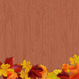 Wooden background 4. Autumn background with autumn leaves on wooden surface, vector illustration Royalty Free Stock Image