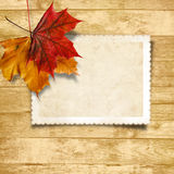 Wooden background  with autumn leaves and old card Royalty Free Stock Images