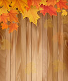 Wooden background with autumn leaves. Stock Photography