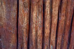 Wooden. Background the bark red surface Royalty Free Stock Images