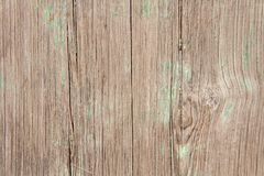 Wooden Background. Beige Background from the Natural Tree. Wood texture. Empty Wooden Background for Design, Design and Templates.  royalty free stock photo