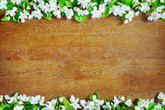 Wooden background with border made of apple flowers Royalty Free Stock Photography