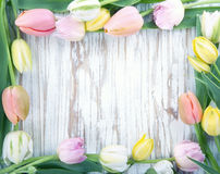 Wooden background with colorful tulips Stock Photos