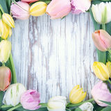 Wooden background with colorful tulips Royalty Free Stock Photos