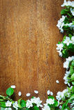 Wooden background with corner made of apple flowers Royalty Free Stock Images