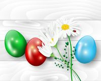 Wooden background with easter eggs and daisy flowers. Vector illustration vector illustration