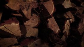 Wooden background. Firewood stacked. Texture. Firewood to ignite and maintain fire stock video
