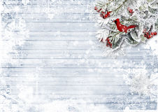 Wooden background with firtree, holly, bird,snowflake Royalty Free Stock Image