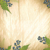 Wooden background with flowers Stock Image