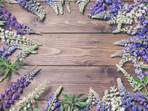 Wooden background with frame of lupine flowers Stock Photo
