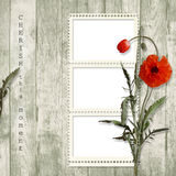 Wooden background with frame and poppy Stock Photo