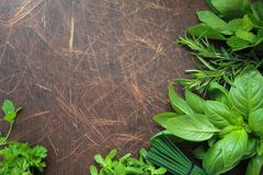 Wooden background with fresh herbs Royalty Free Stock Photography