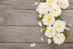 Wooden background with fresh rose flowers Stock Image