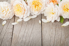 Wooden background with fresh rose flowers Royalty Free Stock Photography