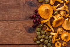 Brown wooden background with a generous autumn harvest: chanterelle mushrooms, yellow and red gooseberries Stock Photos