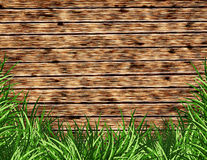 Wooden background with a grass Royalty Free Stock Image