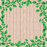 Wooden background with green floral frame Stock Photography