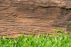 Wooden background. And green grass royalty free stock photos