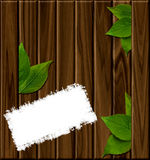 Wooden background with green leaves Royalty Free Stock Photos