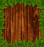 Wooden background with green leaves. And place for text Royalty Free Stock Photos
