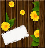 Wooden background with green leaves Royalty Free Stock Photo