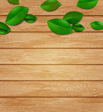 Wooden background with green leaves Royalty Free Stock Image