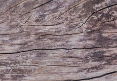 Wooden background  grunge wood board. Stock Images