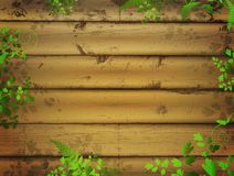 Wooden background with leaves. Wooden background with green leaves and ladybugs Stock Images