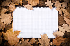 Wooden background with leaves and notebook Royalty Free Stock Photography
