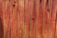 Wooden background. The light broun wood texture with natural patterns background royalty free stock photos
