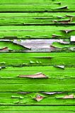 Wooden background with light green peeling paint Stock Images