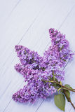 Wooden background with lilac flowers Royalty Free Stock Photo