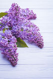 Wooden background with lilac flowers Stock Photos
