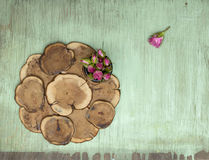 Wooden background with little pink roses. Grunge mockup. Green old painted texture. Stock Image