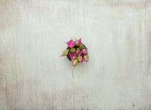 Wooden background with little pink roses. Grunge mockup. Green old painted texture. Royalty Free Stock Image